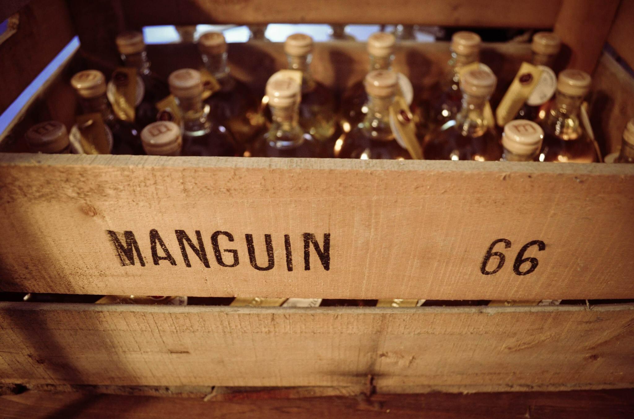 Manguin