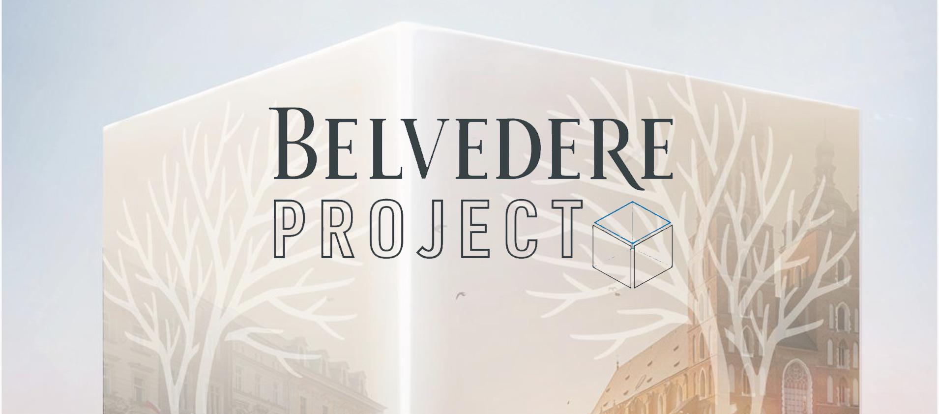 Belvedere Vodka Project